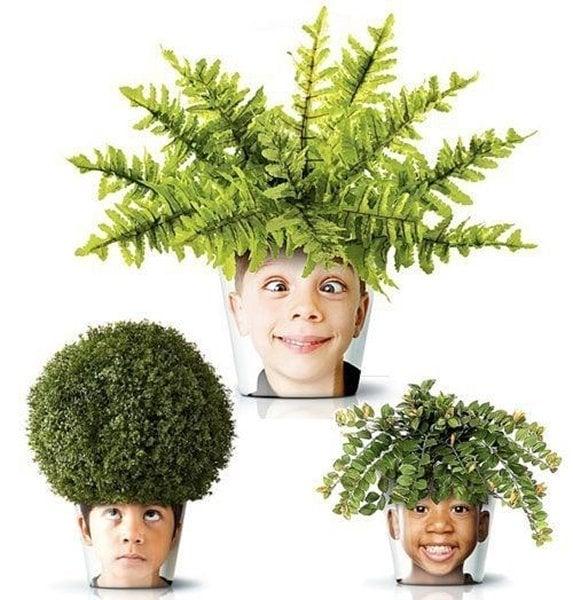 יצירת עציץ ראש