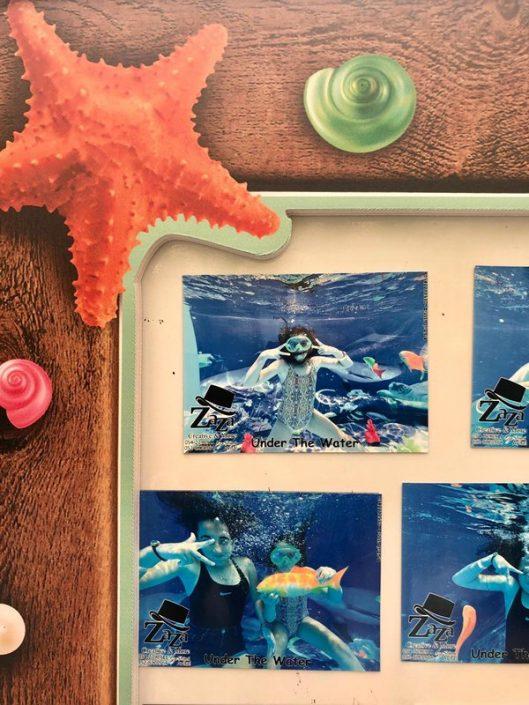 תמונות מאירוע מתחת למים של זאזא